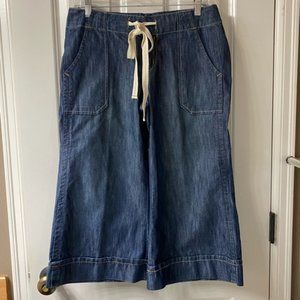 Level 99 Wide Leg Capri Denim/ Gaucho